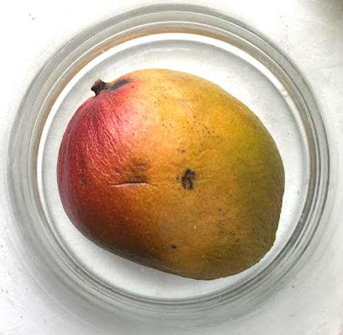 Mango-24