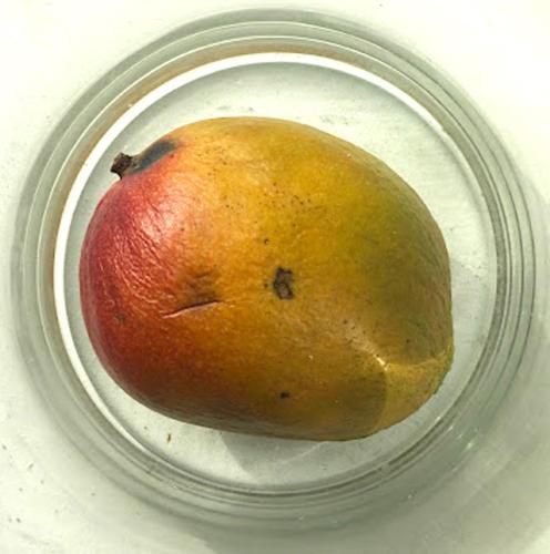 Mango-26