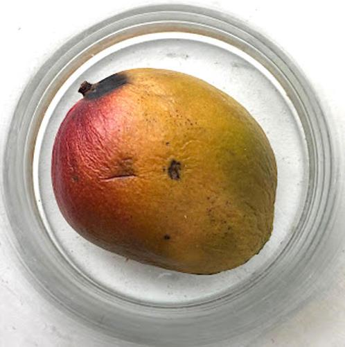 Mango-29