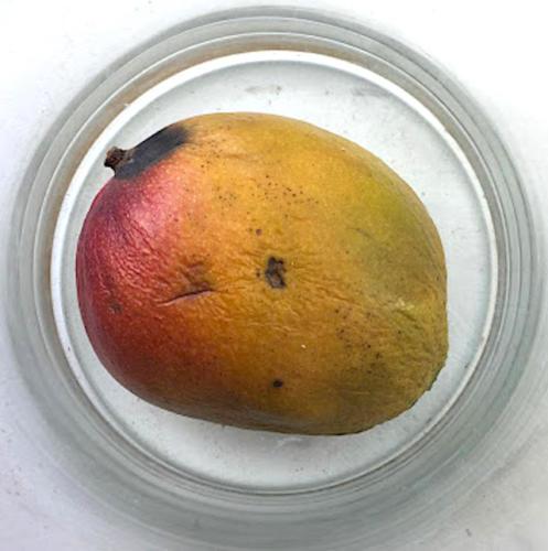 Mango-30